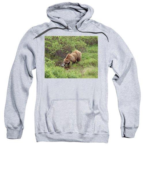 Thirsty Grizzly Sweatshirt