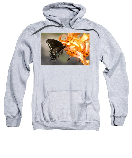 This Butterfly Loves Tiger Lilies Sweatshirt