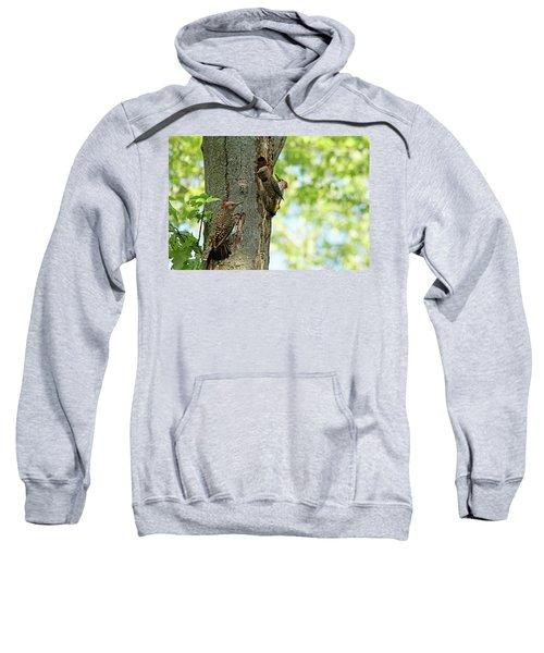 Three Flickers Sweatshirt