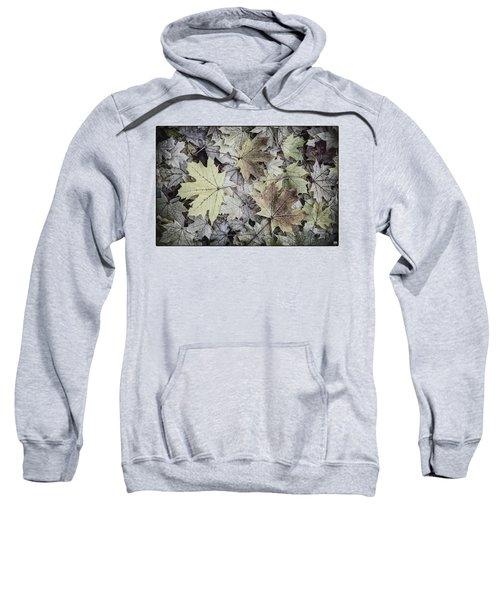 Three Leaves Sweatshirt