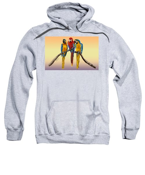 Three Macaws Hanging Out Sweatshirt
