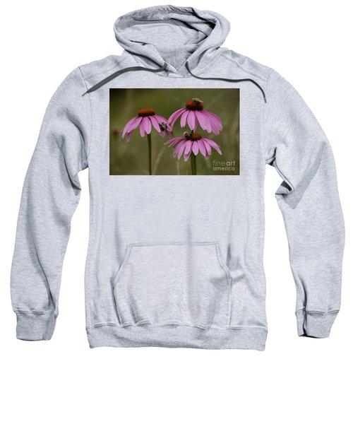 Three Sweatshirt