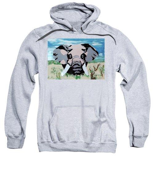 Thunder Bull Sweatshirt