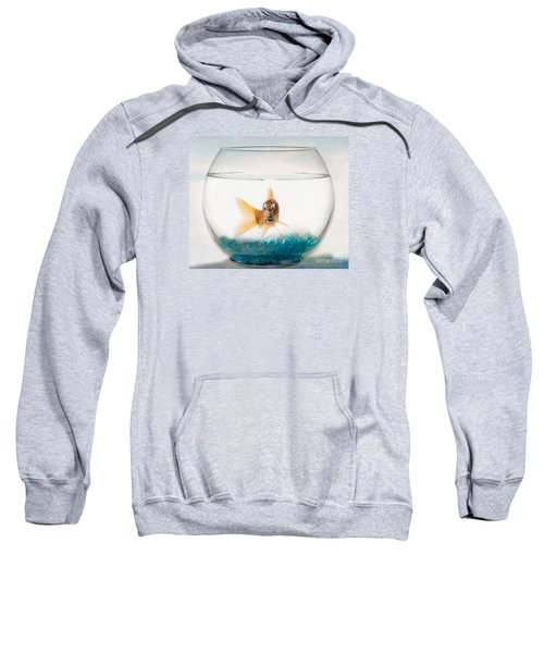 Tiger Fish Sweatshirt by Juli Scalzi