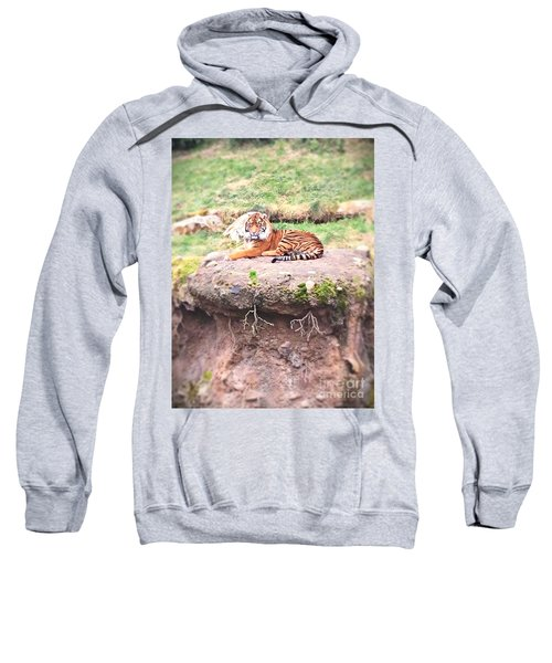 Tiger Sweatshirt