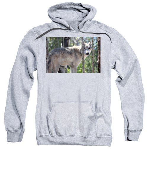 Timber Wolf Sweatshirt