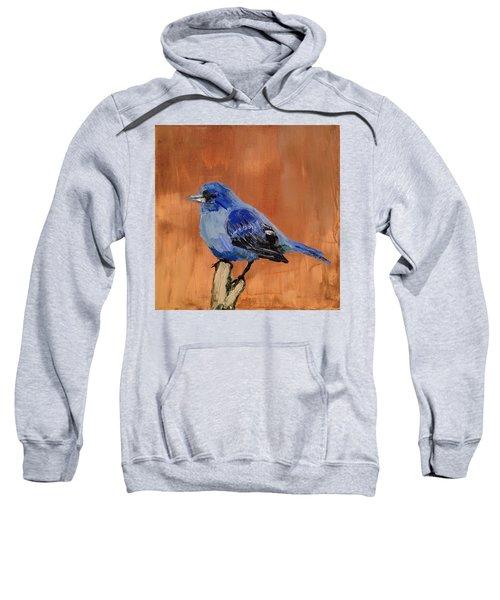 Tiny Blue Sweatshirt
