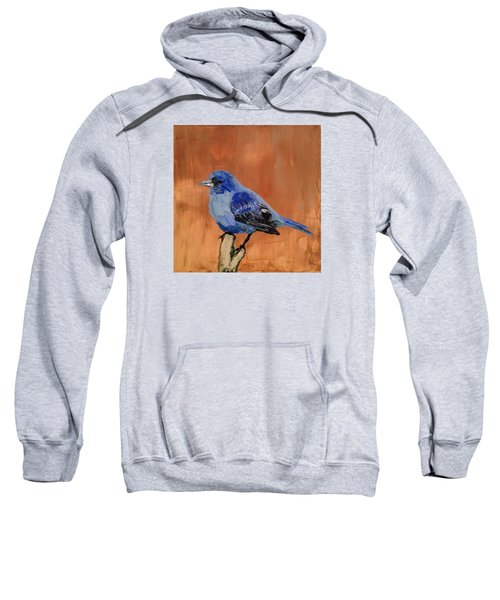Tiny Blue Sweatshirt