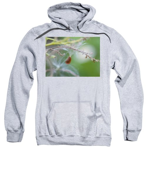 Tiny Seed Sweatshirt