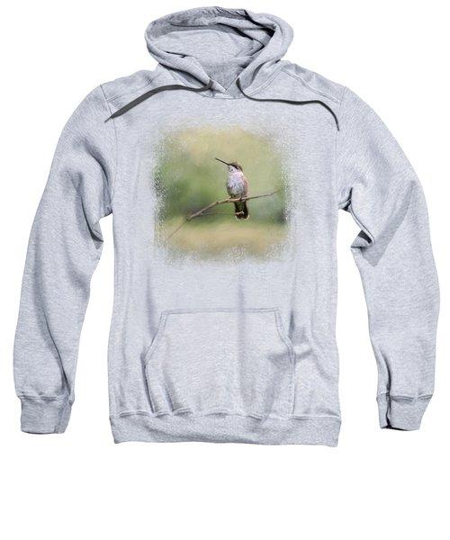 Tiny Visitor Sweatshirt