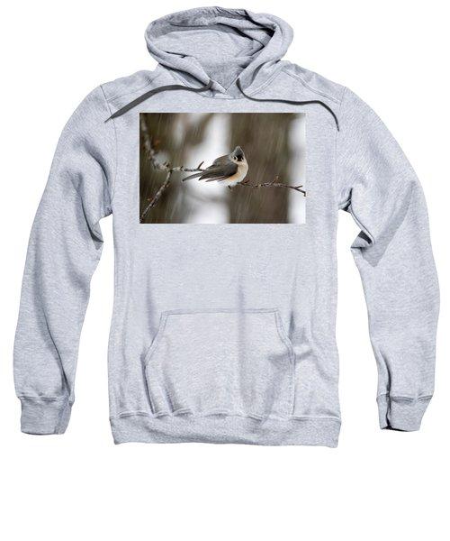 Titmouse During Snow Storm Sweatshirt
