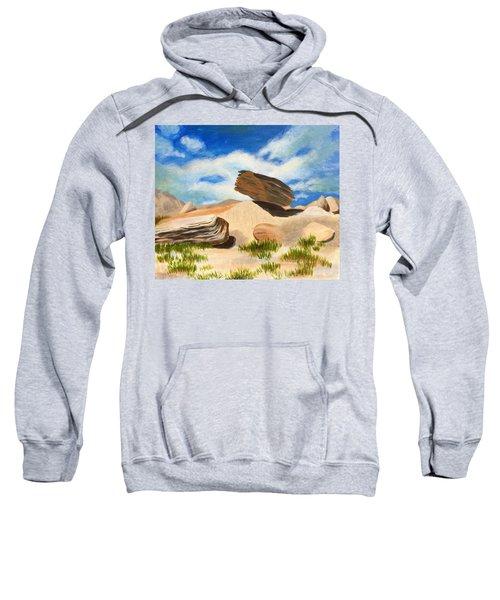 Toadstool Park Nebraska Sweatshirt