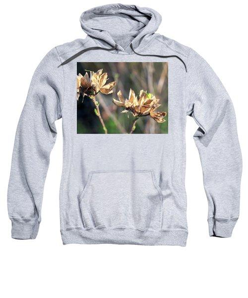 Toasted Sweatshirt