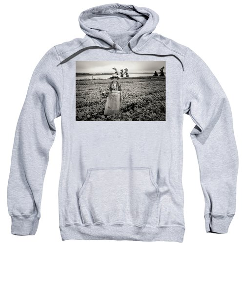 Tobacco Farm Sweatshirt