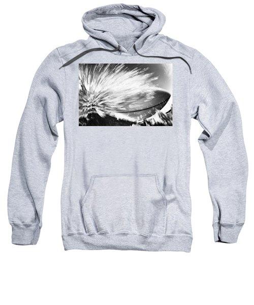 Tom's Board Sweatshirt