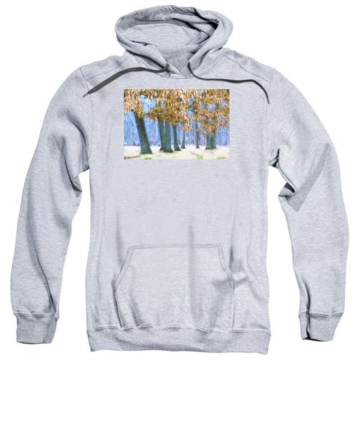Tones Of Winter Sweatshirt