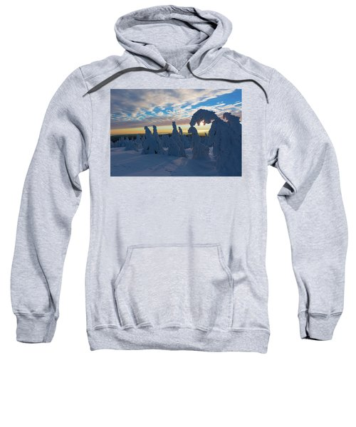 Touched From The Winter Sun Sweatshirt