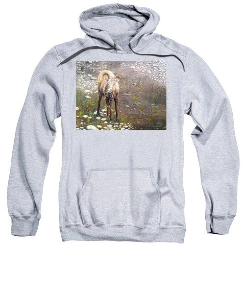 Tourist Attraction Sweatshirt
