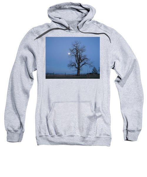 Tree And Moon Sweatshirt