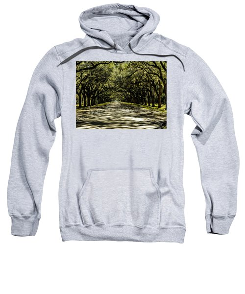 Tree Covered Approach Sweatshirt