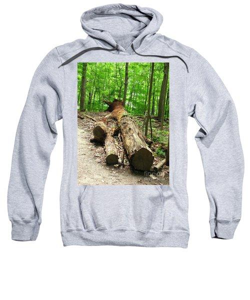 Tree Down Sweatshirt