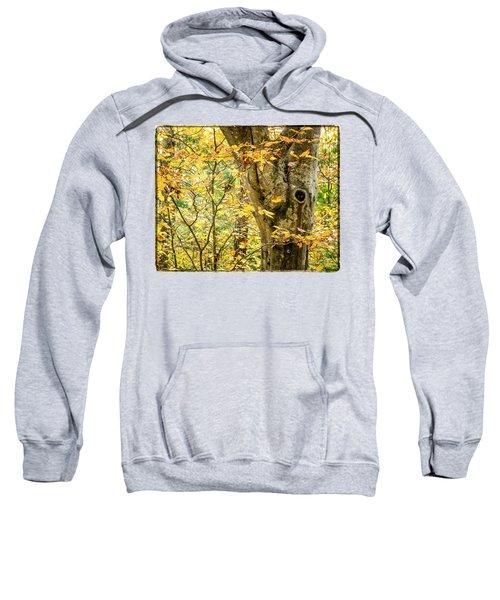Tree Hollow Sweatshirt