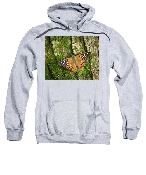 Sweatshirt featuring the photograph Tree Hugger by Bill Pevlor