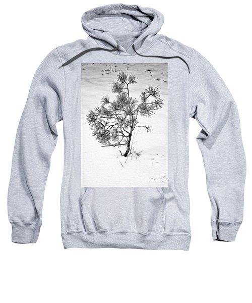 Tree In Winter Sweatshirt