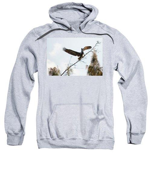Tree Landing Sweatshirt