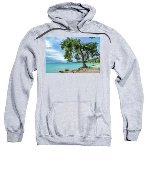 Tree On Northern Dalmatian Coast Beach, Croatia Sweatshirt