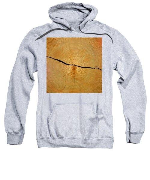 Tree Rings Sweatshirt