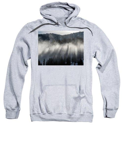 Tree Shadows Sweatshirt