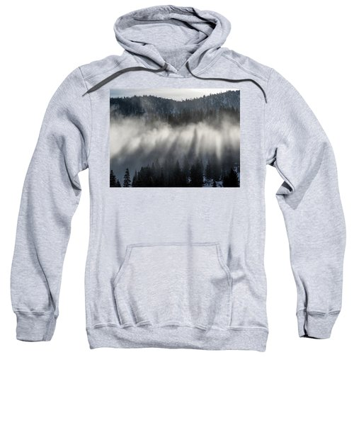 Tree Shadows Sweatshirt