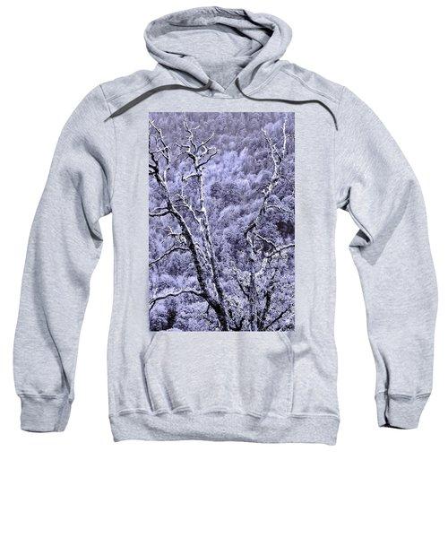 Tree Sprite Sweatshirt