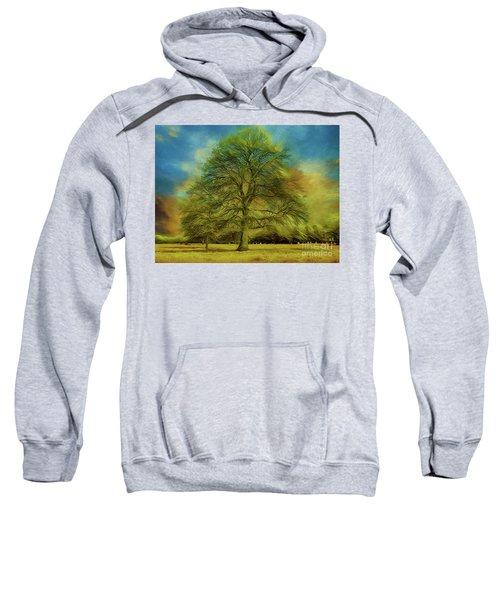 Tree Three Sweatshirt