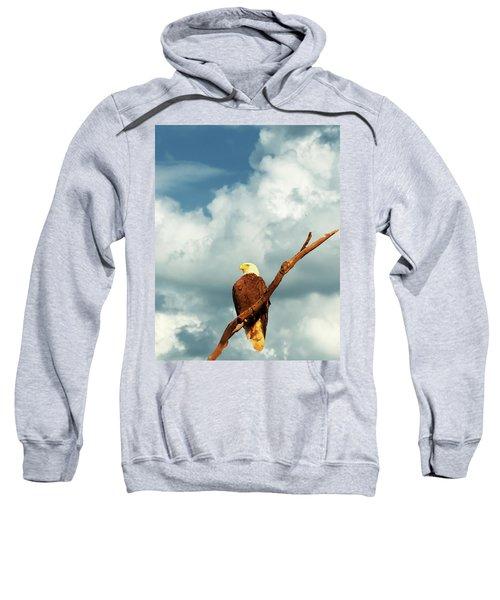 Tree Top Eagle  Sweatshirt