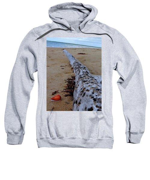 Tree Trunk And Shell On The Beach Full Size Sweatshirt by Exploramum Exploramum