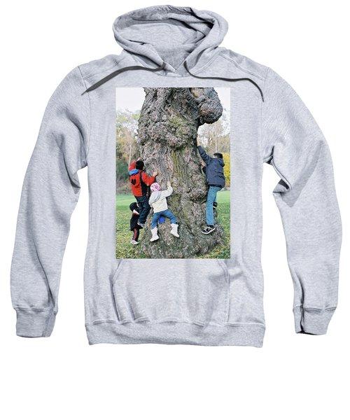 Tree Urchins Sweatshirt