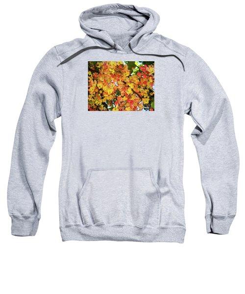 Trees And Flowers In Hawaii Sweatshirt