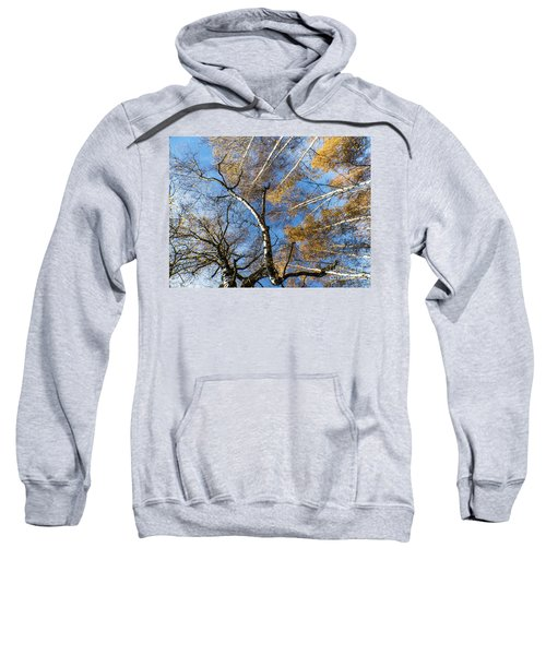 Trees Grow To The Sky Sweatshirt
