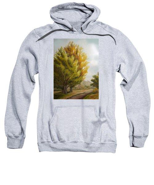 Trees In Boulder Sweatshirt