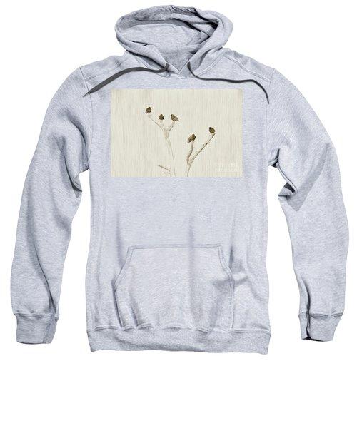 Treetop Starlings Sweatshirt