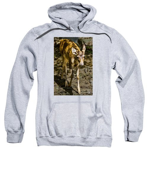 Trepidation Sweatshirt
