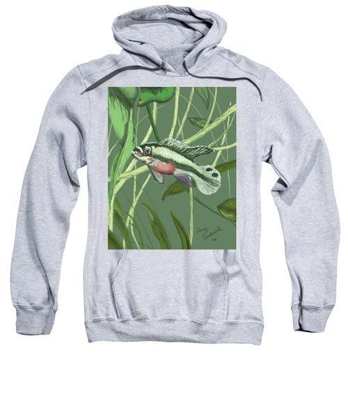 Tri Color Krib Sweatshirt