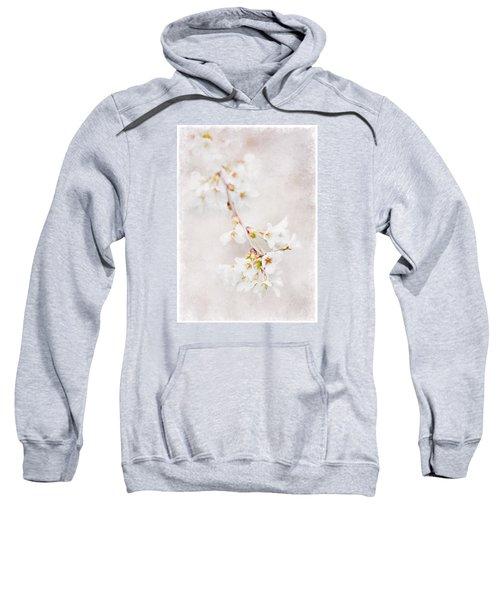 Triadelphia Cherry Blossoms Sweatshirt