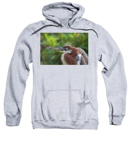 Tricolored Heron - Bad Hair Day Sweatshirt