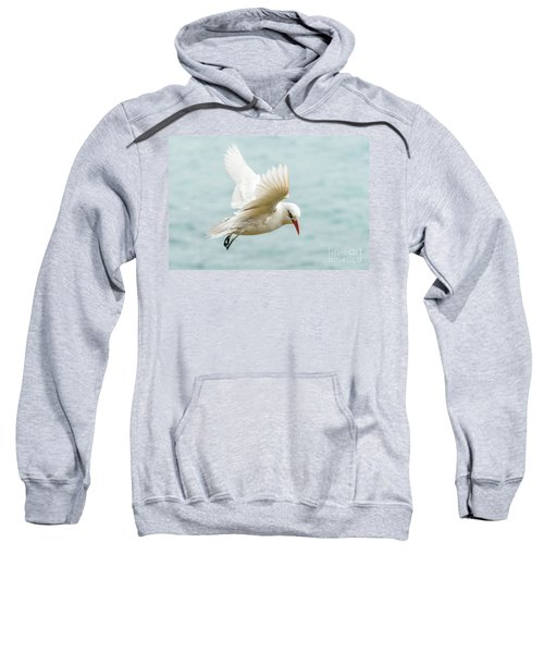 Tropic Bird 4 Sweatshirt