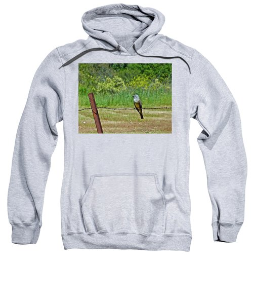 Tropical Kingbird Sweatshirt