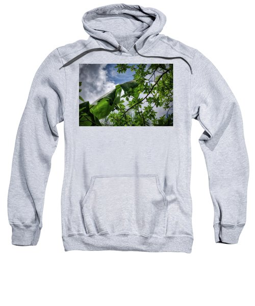 Tropical Sky Sweatshirt