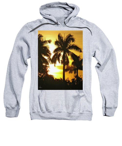 Tropical Sunset Palm Sweatshirt